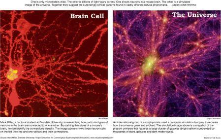 neuron-galaxyw