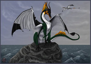 frisian_penguin_dragon_by_tacimur3