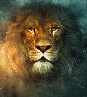aslan-300
