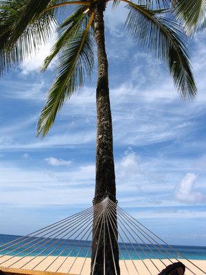 life_in_a_hammock