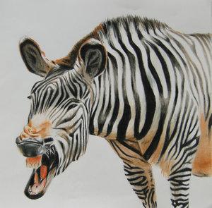 Zebra_by_mikomi34